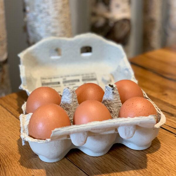 Eier 6-er Packung aus fairer Tierhaltung bei unseren Partnerbetrieben