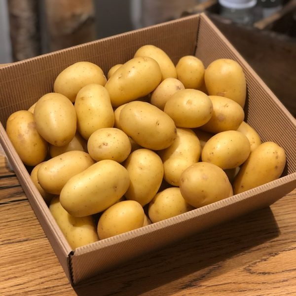 Frische Kartoffeln – wir beliefern Sie gern mit Waren aus der Region